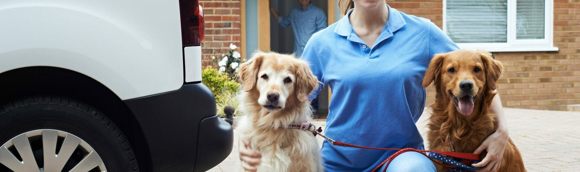 Why do you need Dog Walker's Insurance?