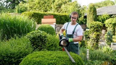 Landscape Gardener's Insurance: Explained