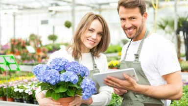 Insurance For Florists: Explained