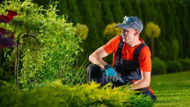 Gardener's Insurance