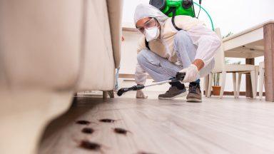 Pest & Vermin Control Insurance
